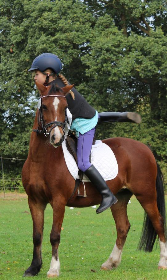 viaje de estudiantes paseo a caballo